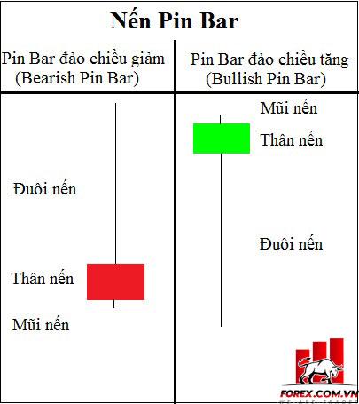 Pin bar là gì