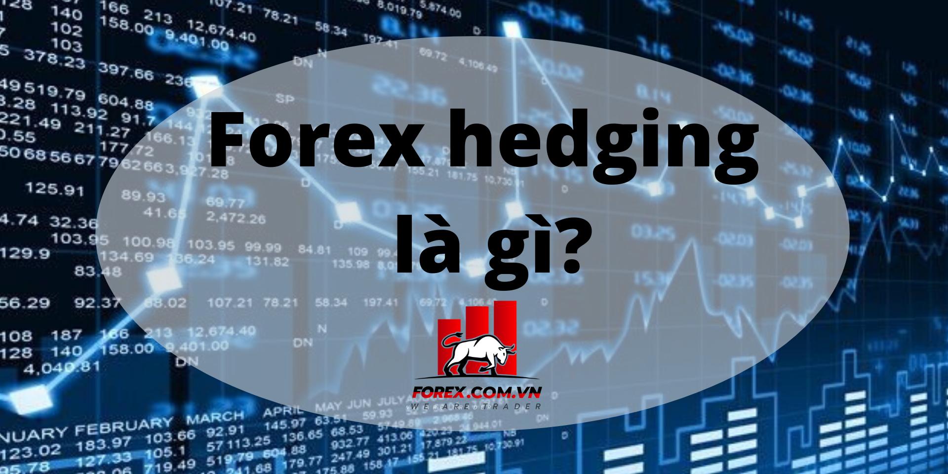 Forex Hedging Là Gì