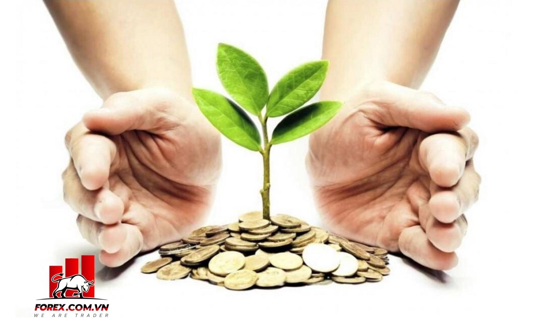 Đầu tư vàng hay gửi tiết kiệm đâu là hình thức sinh lời và an toàn hơn