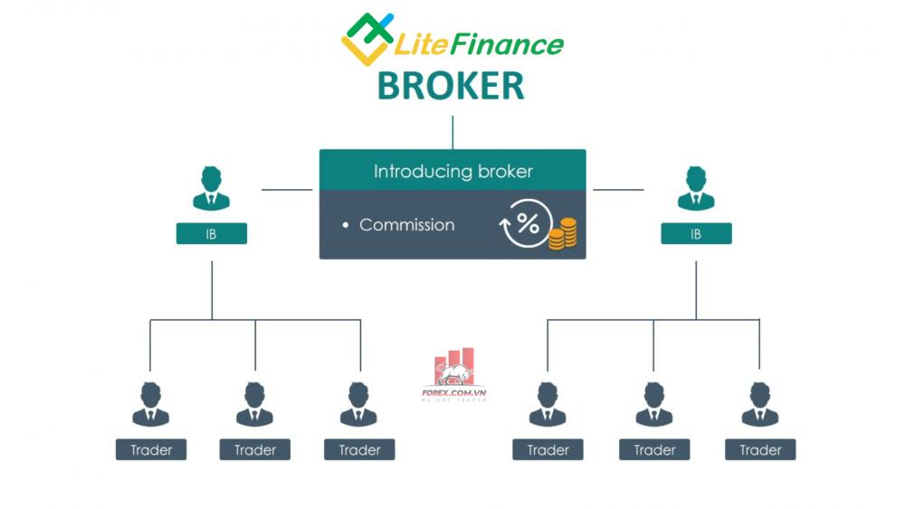 IB Forex LiteFinance