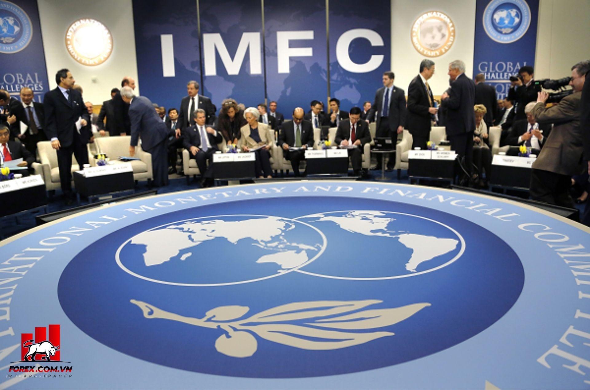 cuộc tranh luận của ủy ban chỉ đạo Quỹ Tiền tệ Quốc tế