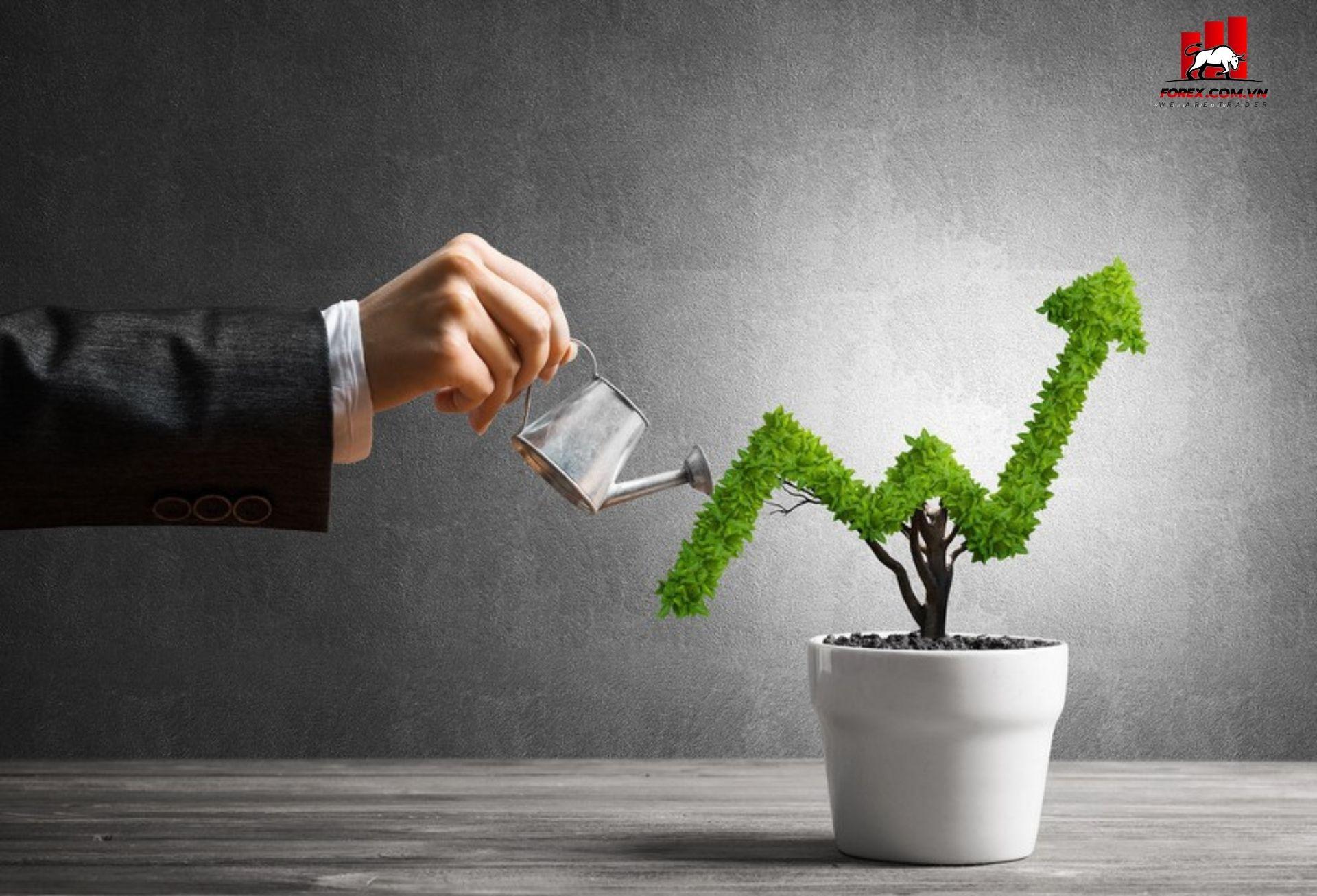 sàn giao dịch liteforex thích hợp cho nhà đầu tư mới