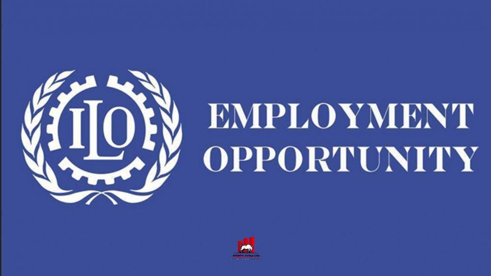 Tổ chức Lao động Quốc tế (ILO)