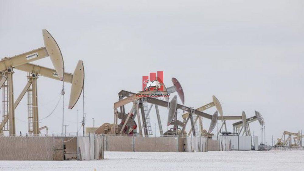 khai thác dầu thô tại texas bị đình trệ