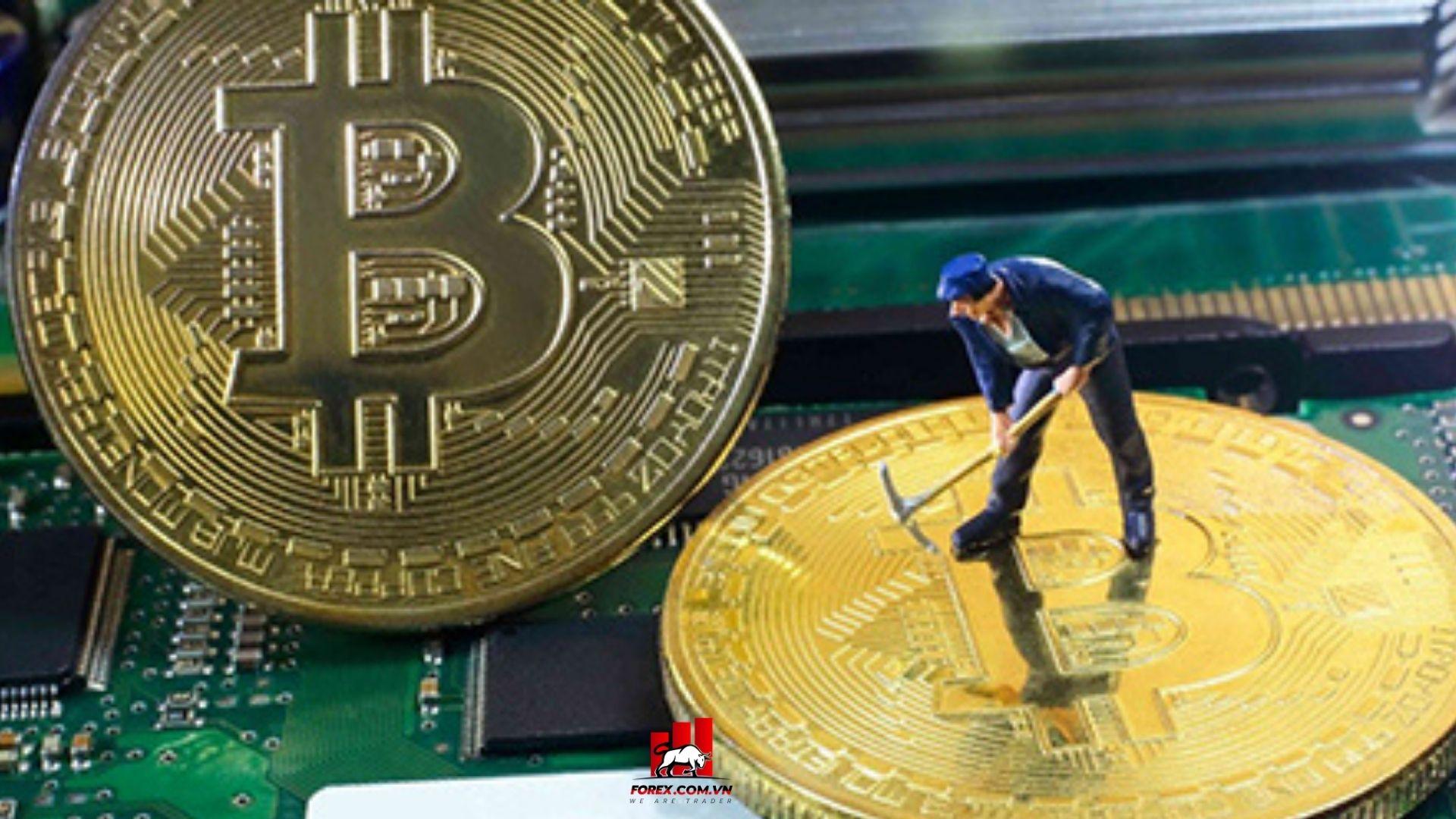 giá bitcoin giảm khi Ấn Độ xem xét cấm tiền điện tử