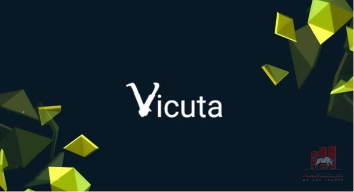 Vicuta.com