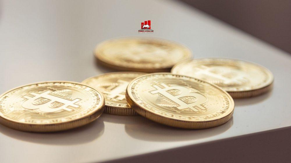đấu thầu hợp pháp bitcoin