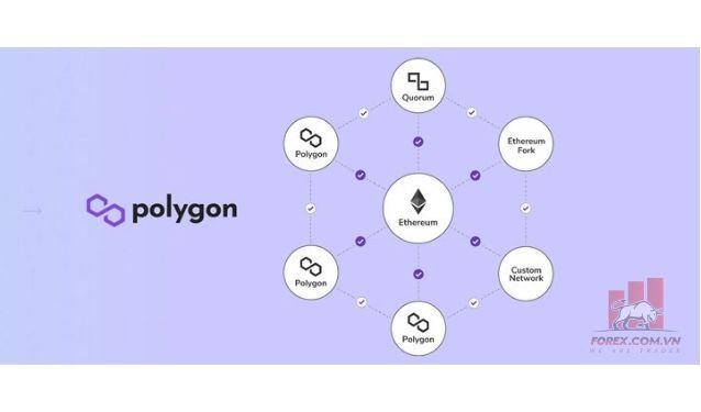 Cách Polygon hoạt động