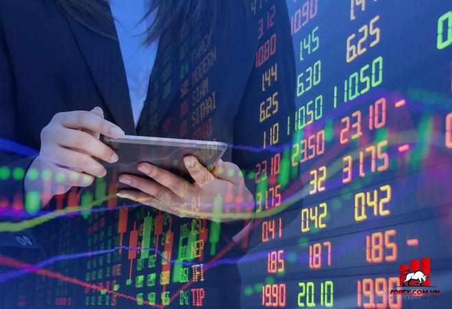 Nên đầu tư chứng khoán hay đầu tư Forex? Đâu là phương án tối ưu?