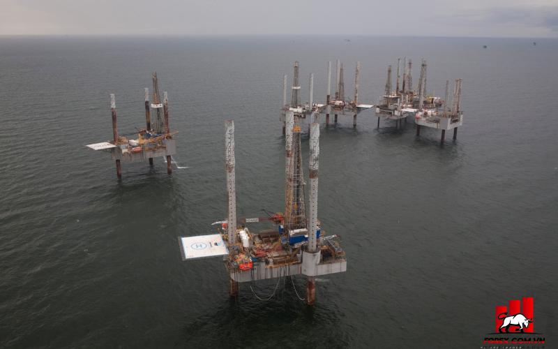 Giá dầu tăng do ảnh hưởng của cơn bão Ida 1