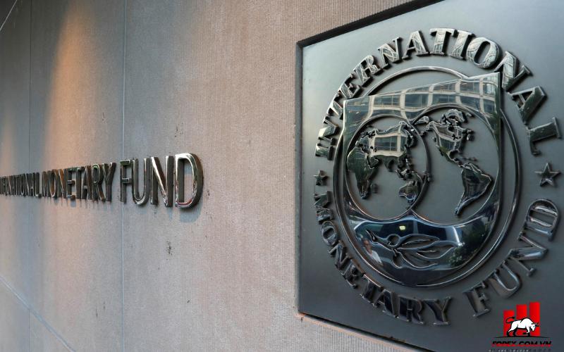 IMF phân bổ SDR 650 tỷ USD hỗ trợ phục hồi sau đại dịch 1