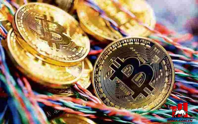 Cổ phiếu liên quan đến tiền điện tử lao dốc ở Hồng Kông, bitcoin ổn định 1