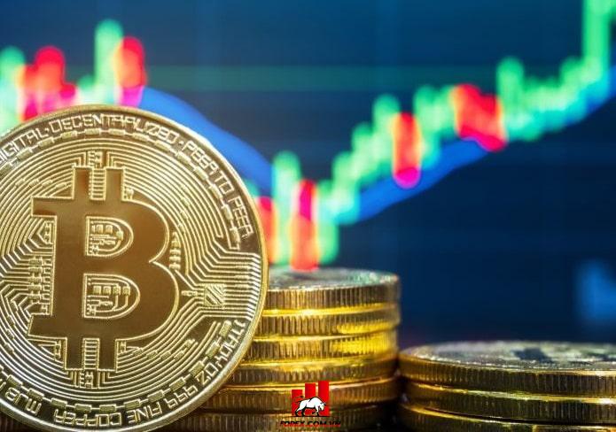 Coin Midcap là gì?